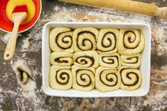 Unbaked and proved cinnamon rolls Stock Photography
