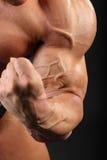 Unbearbeiteter Bodybuilder demonstriert zweiköpfigen Muskel Stockfotos