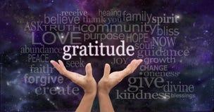 Unbegrenzte Dankbarkeit Stockbilder