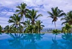 Unbegrenztheits-Pool mit Kokosnuss-Bäumen lizenzfreies stockfoto