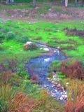 Unbehandeltes Abwasser, das in Fluss fließt Stockfotos