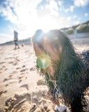 Unbekümmerter König Charles Spaniel am Strand Stockfotos