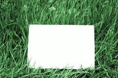 Unbelegte Karte im dunkelgrünen Gras Stockfoto