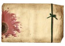 Unbelegtes altes Papier mit Blume Stockfotografie