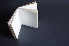 Unbelegtes Buch lizenzfreies stockbild