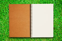 Unbelegtes Notizbuch geöffnet auf Feld des grünen Grases Lizenzfreie Stockfotos