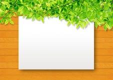 Unbelegtes Papier auf Holz und Grünblättern Lizenzfreies Stockfoto