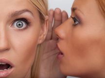 It is unbelievable! Close-up of two beautiful young women gossip Stock Photos