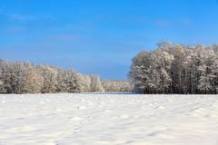 Unbelievable winter scene with snow covered forests. Stock Photo
