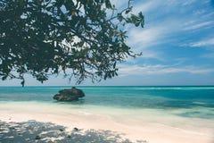 Unberührte tropische Strandküstenlinie, Türkisansicht der Meerwi Stockfotos