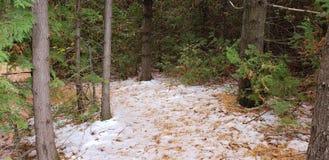 Unberührter Schnee lizenzfreies stockfoto