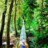 Unbound природа Стоковая Фотография RF
