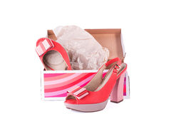 Unbranded new woman shoes in box. Isolated on white Stock Photos