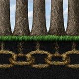 Unbreakable Solidarity Link Stock Photos
