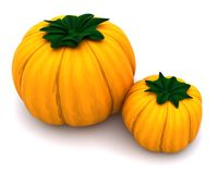 Uncarved holiday pumkins Royalty Free Stock Image
