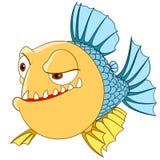 Uncertain piranha Stock Photo
