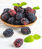 Вunch of wild berries Royalty Free Stock Image
