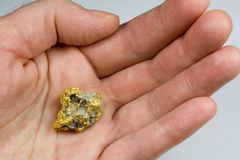 Nevada usa złoto, Kwarcowa bryłka w ręce/ Fotografia Stock