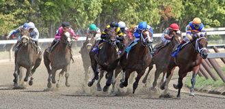 Uncle Mo Wins His First Race Stock Images