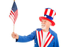 Uncle Sam Holds US Flag. American icon Uncle Sam looks at a US Flag. Isolated on white stock image