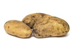 3 uncleaned картошки на белой предпосылке Стоковое Изображение