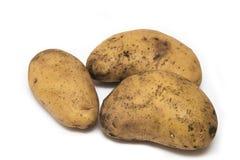 3 uncleaned картошки на белой предпосылке Стоковое фото RF