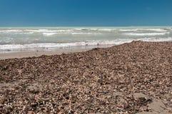 Uncleared strand i låg säsong, Italien arkivbilder