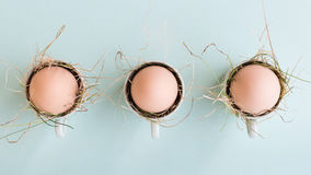 Uncolored natural easter eggs in espresso cups; happy easter concept; green minimalist easter Stock Photography