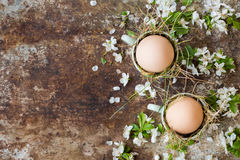 Uncolored natural easter eggs in green espresso cups, happy easter concept with white spring flowers Royalty Free Stock Images