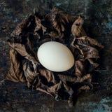 Uncolored naturalni Easter jajka, szczęśliwy Easter pojęcie, retro Easter Zdjęcie Royalty Free