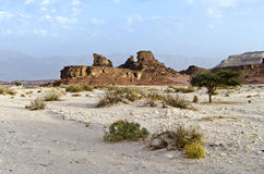 Uncommon rocky formation in Timna park, Israel. Timna park is a famous geological and historical national park in Israel Royalty Free Stock Image