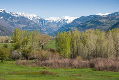Uncompagre Valley. Uncompahgre Valley from Loghill Mesa Road near Ridgway, Colorado with Mt. Abrams and the San Juan Mountains in the background Stock Image