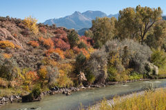 Uncompahgre River near Ridgway. High country stream runs through early autumn countryside near Ridgway, Colorado with peaks of the San Juan Mountain Range in the Royalty Free Stock Photography
