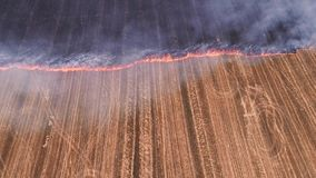 Uncontrolled rural fire burning plant field smoke. Uncontrolled rural fire. Burning plant field. Smoke. Countryside landscape stock footage