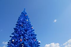 Unconventional blue christmas tree. With blue sky background, blue color concept, blue christmas Stock Photography