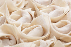Uncook chinese meat dumpling Stock Image