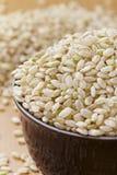 Uncooked коричневый рис в кишечнике Стоковая Фотография
