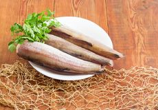 Uncooked Alaska pollock carcasses on wooden surface with fishing. Uncooked carcasses of the Alaska pollock without of head and tail and bundle of parsley on a Stock Image
