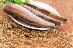 Uncooked Alaska pollock carcasses on wooden surface with fishing Royalty Free Stock Photos