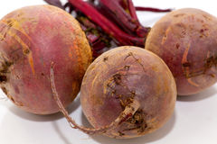 Uncooked beetroot Stock Images