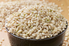 Uncooked brown rice in a bowel. With woody background Stock Images