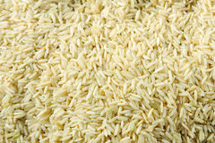 Uncooked Brown rice grains Royalty Free Stock Photos