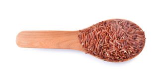 Uncooked Brown rice grains Stock Image