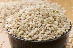 Uncooked brown ryż w kiszce Obrazy Stock
