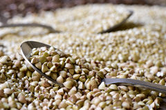 Uncooked buckwheat seeds Royalty Free Stock Photos