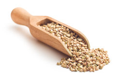 Uncooked buckwheat Stock Images