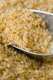 Uncooked Bulgur Royalty Free Stock Photos