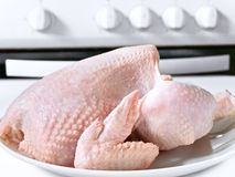 Uncooked chicken Royalty Free Stock Photo