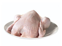 Uncooked chicken Royalty Free Stock Photography