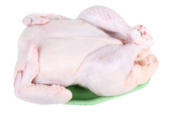 Uncooked chicken Stock Photography